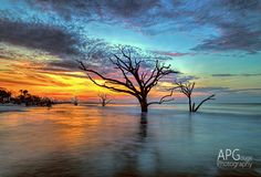 Botany Bay is a terrific place on the South Carolina coast for unusual sunrises.  I've enjoyed discovering the beach there, and rediscovering it every time I go back.  #SouthCarolina #Edisto #sunrise