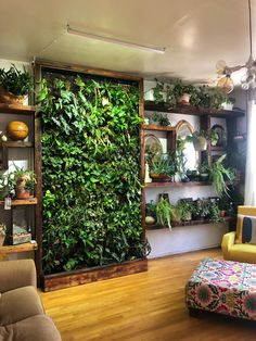 Vertical Gardens Are the Perfect Small Space Solution for Plant Lovers is part of Vertical garden wall - With a bare wall or fence you can easily grow plants, herbs, and vegetables Jardim Vertical Diy, Plantas Indoor, Vertical Garden Wall, Vertical Planter, Room With Plants, Plant Rooms, House Plants, Plants On Walls, Office With Plants