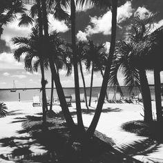 Key Largo - Key West - Florida - USA