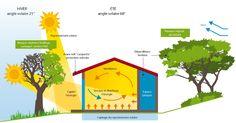 ArchiGuelma: Les principes de base d'une conception bioclimatique