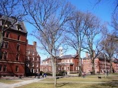 Explore Harvard University in This Photo Tour: Harvard Hall and the Old Yard