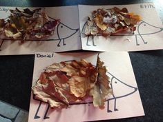 Hedgehog leaf pictures