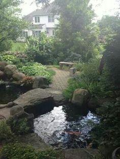 Pond -patio retreat back yard