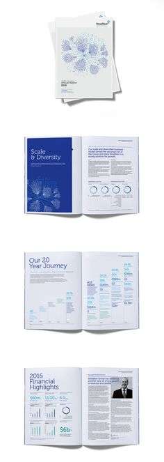 Steadfast Annual Report 2016 by Ascender