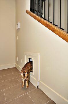 The 10 Best Hidden Cat Litter Box Ideas Room Under Stairs Hiding Cat Litter Box, Diy Litter Box, Hidden Litter Boxes, Cat Litter Tray, Cat Litter Box Enclosure, Animal Room, Cat Liter, Hidden Toilet, Hidden Laundry