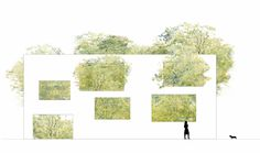 one of the greatest elevations!    House  N / Sou Fujimoto