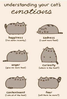 """Ignore the Reasons Why Pusheen The Cat Would Make The Perfect Boyfriend"""". Pusheen is a girl. Funny Cats, Funny Animals, Cute Animals, Cats Humor, Funny Horses, Fat Cats, Cats And Kittens, Fat Kitty, Cats 101"""