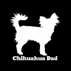 Longhaired Chihuahua Dad Vinyl Car Window Decal