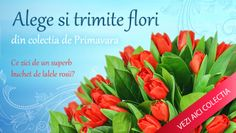 Noutati pe floraria online http://www.floricudrag.ro/