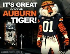 it's still great to be an AUBURN TIGER! so proud of how they played! WAAARRRRRR EAGLE HEY!