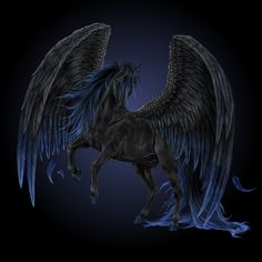 Black and blue Pegasus