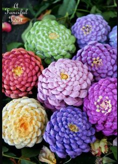 Make Zinnia Flowers from Pine Cones! Painted pinecones (upside down) as Zinnia's!Painted pinecones (upside down) as Zinnia's! Pine Cone Art, Pine Cone Crafts, Pine Cones, Pinecone Crafts Kids, Diy Projects To Try, Crafts To Make, Fun Crafts, Crafts For Kids, Fall Projects
