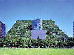 ACROS Fukuoka - Giappone   La struttura a terrazze raggiunge un' altezza di circa 60 metri e contiene qualcosa come 35.000 piante di 76 specie diverse.