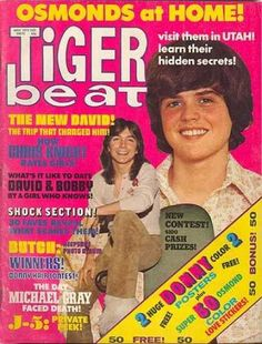 Tiger Beat magazine - that's where my allowance went.  Then I took the magazine apart and plastered my bedroom walls with Donny, David Cassidy, Bobby Sherman, and the Jackson 5.  What a goof.