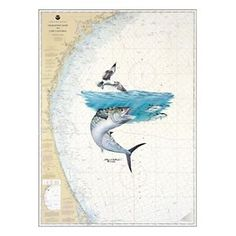 Steve Whitlock Nautical Chart Art - Southeast Kingfish