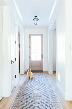 Long Entry Rug with Puppy