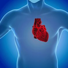 Study finds that receiving an undersized heart increases risk of death in heart transplant patients