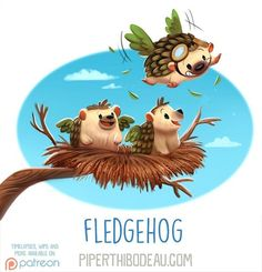 Daily Paint 1616. Fledgehog by Piper Thibodeau