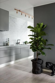 10 Cheap And Easy Cool Tips: Modern Minimalist Bedroom Decor minimalist kitchen white black cabinets.Modern Minimalist Kitchen Herringbone Floors minimalist home architecture stairs. Kitchen Inspirations, Modern Houses Interior, House Interior, Minimalist Kitchen, Modern Kitchen, Kitchen Room, Kitchen Wall Colors, Light Grey Kitchens, Contemporary Kitchen