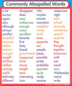 Commonly Misspelled Words Study Buddy Sticker   Main Photo (Cover)
