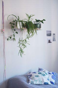 A home decor blog Decorating Blogs, Indoor Garden, Cosy, Interiors, Bedroom, Live, Home Decor, Decoration Home, Room Decor