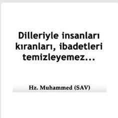 Muhammed Sav, People Like, Islam, Believe, Facebook, Words, Horse, Faith