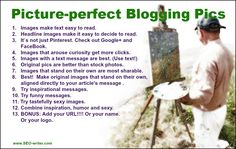 Picture-perfect blogging pics