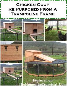 Re Purposing a trampoline frame for a chicken coop and run >>great idea but the Ladies need some sunlight. Portable Chicken Coop, Backyard Chicken Coops, Diy Chicken Coop, Chickens Backyard, Clean Chicken, Chicken Pen, Backyard Birds, Trampolines, Chicken Coop Blueprints
