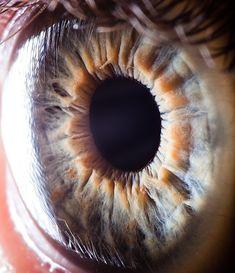 The fantastic macro photos of the human eye by Suren Manvelyan.Incredible close-up photos of Your beautiful eyes Close Up Art, Eye Close Up, Extreme Close Up, Pretty Eyes, Cool Eyes, Beautiful Eyes, Amazing Eyes, Amazing Nature, Close Up Photography