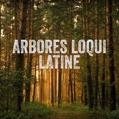 εχει καποιο βαθυτερο νοημα;; να μου εξηγησεις αμα ειναι  The Trees Speak Latin
