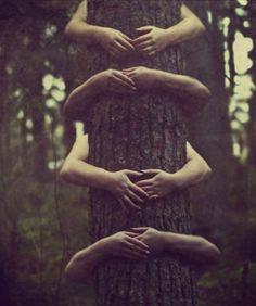 *Tree Huggers*