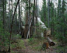 Die Bäume als Nachbarn: Die Männer leben sind in der Wildnis auf sich allein gestellt.