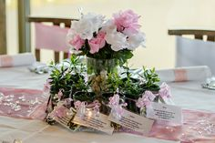 Wedding Photographer - Candid Photos of a Lifetime Gorgeous little plants for guests to keep (and watch it grow as the bride & grooms love grows).. makes a very cute wedding favour / bonbonniere