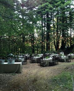 Lighting And Table Placements At An Outdoor Woodsy Wedding