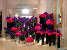 Rose Shop, Valentines, Flowers, Valentine's Day Diy, Valentines Day, Valentine's Day, Royal Icing Flowers, Flower, Florals