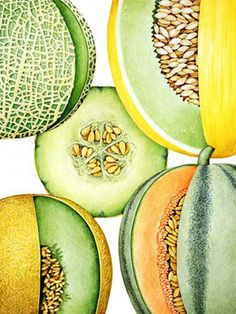 Different kind of #Melons