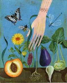 Illustrations for sustainability cookbook, Saisonküche Zürich - unverkennbar Olaf Hajek
