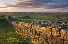 grindon farm | hadrian's wall