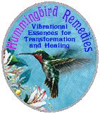 Hummingbird Remedies Vibrational Essences for Transformation and Healing