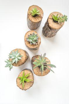 Tree Branch Planter | Design Mom