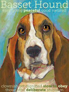 Basset Hound No 1  Art Print 85x11 by ursuladodge on Etsy, $20.00