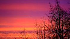 Free Image on Pixabay - Sunrise, Tree, Trees, Sky, Clouds Sunrise Images, Sunrise Pictures, Nature Pictures, Free Pictures, Free Stock Photos, Free Photos, Christmas Tree Images, Sunrise Colors, Picture Tree
