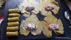 Stevia, Cooking Recipes, Ethnic Recipes, Recipes, Chef Recipes, Recipies