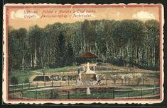 AK Uzhorod, Pohled z Nevicka a Cast parku Presidents, Vineyard, It Cast, Outdoor, River, Places, World, Outdoors, Vine Yard