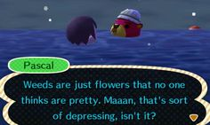 They're also flowers that breed too fast and make my legs itch. Animal Crossing Fan Art, Animal Crossing Memes, Funny Memes, Hilarious, Funny Pics, Ac New Leaf, Animal Pictures, My Idol, Video Games