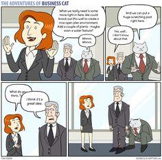Business Cat - Decisions