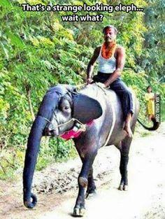 Cuando postureo hay en le India…