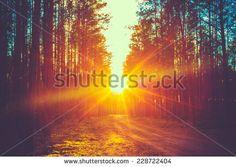 Free Image on Pixabay - Sunset, Lake, Reflection, Glassy