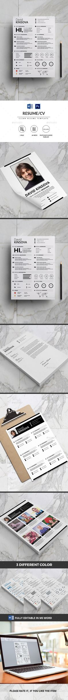 clean resume template ms word free