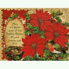 Poinsettia Christmas 🎄
